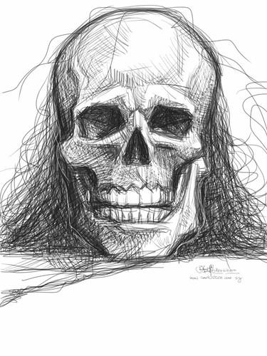 skull study 3 on iPad