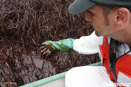 oil spill cleanup volunteer canada,