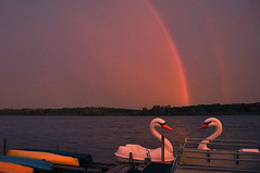 Swan Lake with Rainbows (Madison Guy) Tags: lake water wisconsin boats rainbow swans madison canoes doublerainbow swanboats wi stormyweather paddleboats lakewingra wingraboats