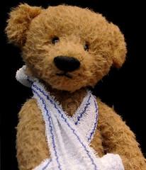Petit Ours Brun (lachaisetriste) Tags: paris vitrine ours peluche blessé passagejouffroy d700 expressyourselfaward