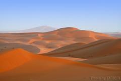 The Desert - Explore (TARIQ-M) Tags: texture landscape sand desert dunes dune riyadh saudiarabia      canonef70200mmf4lusm    canon400d       visipix