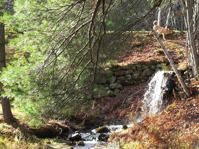 henry_waterfall