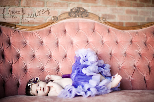 Violet web-2007