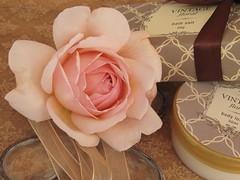 Vintage rose (Poppins' Garden) Tags: ashropshirelad rose austin apricot stilllife