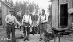 lac bac libraryandarchivescanada bibliothèqueetarchivescanada canada canada150 fish poisson fishing pêche men hommes dog chien fishingparty groupedepêcheurs rations reliefprojectno13 projetd'aideàl'emploino13 camp kowkash ontario july1934 juillet1934 departmentofnationaldefence ministèredeladéfensenationale