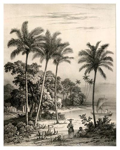 011- Vista de la costa cerca de Bahia- Bichebois Alphonse- Viagem pitoresca através do Brasil 1827