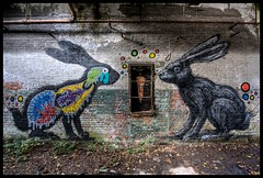 Roa - Hares (Romany WG) Tags: street urban rabbit art abandoned animals graffiti industrial factory belgium carrot aerosol explorers urbex hares roa olib