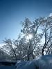 "Raggi di sole ("" paolo ammannati "") Tags: panorama natura cielo neve toscana inverno riflessi viaggi verna casentino ghiaccio flickrdiamond effettinaturali fotoconneve panoramaconneve"