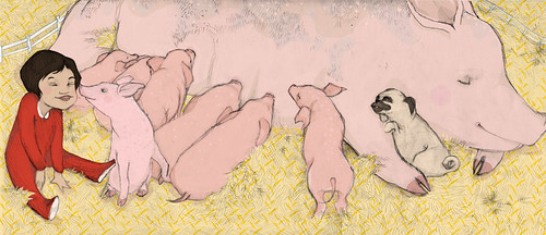 gaia cornwall pig illustration