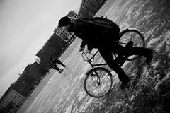 Bike Icle