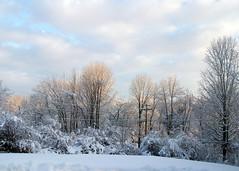 Snow_12010