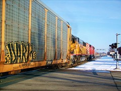 Eastbound Canadian Pacific transfer freight train. Elmwood Park Illinois. Febuary 2008.
