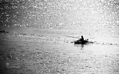 The Old Man & The Sea.. (SonOfJordan) Tags: sunset sea bw sun man water monochrome canon river eos boat fisherman glow shine egypt nile xsi 450d samawi sonofjordan wwwshadisamawicom