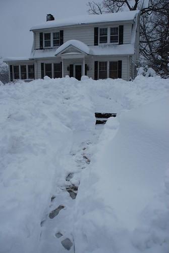snow-feb2010-4