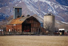 Niwot Farm (Let Ideas Compete) Tags: county wood old roof winter terrain usa mountain snow mountains cold west barn rural america fence landscape countryside us colorado farm united farming boulder silo pasture co backdrop weathered silos essence states dilapidation slope steep slopes dodd twop dilapadated niwot unpainted gambrelroof gambrel