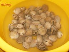 Fideos con almejas-almejas en agua
