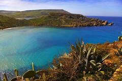 Turquoise Waters (albireo 2006) Tags: blue sea wallpaper nature water wow bay mediterranean turquoise background malta blueribbonwinner tuffieha ghajn justpentax gajntuffiea pentaxart gettyimagesmalta1