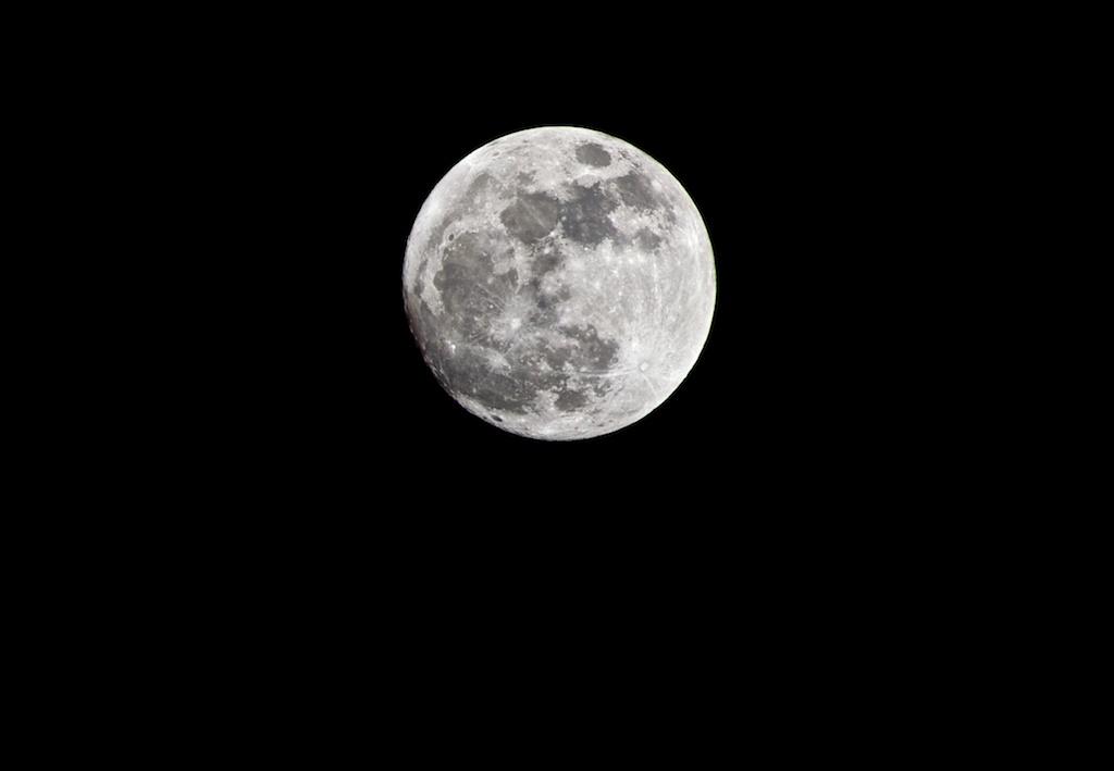 58/365: Moon Unit