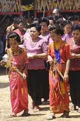 Funeral Procession - Tana Torajah