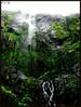 And that's what I am waiting for... (Vi. Ko. (Vikas K.)) Tags: india black green nature water rock wall trekking trek waterfall rocks natural fort maharashtra torna pune torana