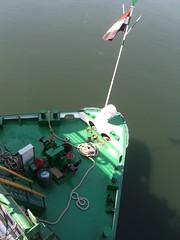 Bow of the Queen of Hansa - Egypt 2010 (Moocha) Tags: cruise ship queen nile bow hansaegypt