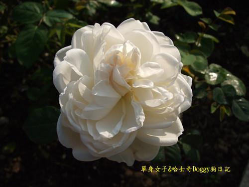 2010-02-10-070