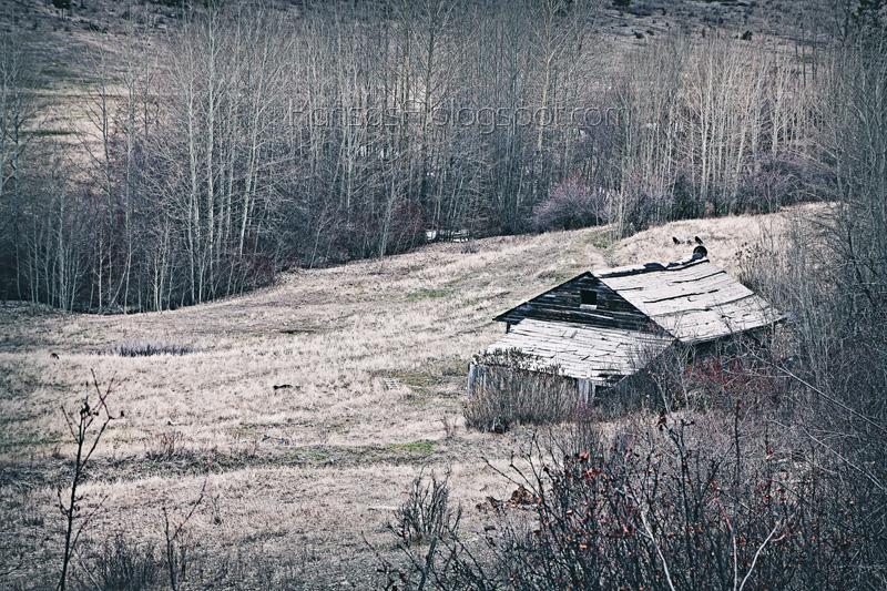 Abandoned (by KansasA)