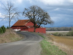 Red Barn, Trees & Fields, Gravel Road, Clouds, White Stock Rack, Willamette Valley, Oregon (Pixel Packing Mama) Tags: wow perfect lovely1 flickrcentralpool flickrwow 50v5f pixelpackingmama dorothydelinaporter yourpostcardshotpool oregonpool greatshotpool 50to99viewspool views50pool treesinthedaylightset stunningpool redrulepool 5favesandlessthan100viewswhenaddedpool wowaddonlypicturescommentedwithawowpool favorites5pool wowiekazowiepool 510favoritesonlyoneadaypool 15favouritespool usaunitedstatesofamericapool beautifulphotoswithabeautifulcommentpool worldsfavorite1ormorefaveseachnolimitoffavedphotopool willamettevalleyoregonpool inmyneighborhoodpool barnsset redbarnspool ruralamericanwestpool reallyunlimitedpool mayberryrfdruralplacesrurallivespool 5075viewspostupto5perdaypool scenicsnotjustlandscapespool everythingamericapool cloudydayspool oaktreesthequercusclubpool aestheticspool ashotadayorsopool gorgeouscommentedwithgorgeouspool welldonepool ruralamericapool gravelroadphotographypool canonpowershota720isyourbestpool scenicareasorphotosinruralareaspool views5175pool everythingamericanphotospool commentedwithwowunlimitedpool 50plusphotographersaged50andbetterpool terrificcommentedwithterrificpool theoregonphotographersgrouppool wowphotospool photosfrom20002010pool allwelcomeiamsickofrulesandregulationsnewcontestpool godblessamericapool americanphotospool beautifuluniverse~photosmusthavebeautifulincommentspool fantasticcommentedwithfantasticpool favoritedpixfirsthalfof2010set pixuploadedfirsthalfof2010set pixtakeninfirsthalfof2010set picturestakenwithcanonpowershota2000isin2010set obsessivephotography30perdaypool capturephotoscommentedwithpositivewordcapturepool loveittagphotosloveitpool oregonscenicoutdoorspool pixelpackingmama~prayforkyronhorman photosfrom20102020pool oversixmillionaggregateviews over430000photostreamviews