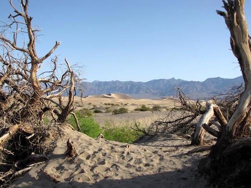 Mesquite Flat Dunes-5