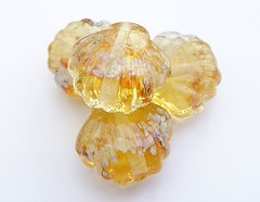 Golden Shore Sea Shells (Glittering Prize - Trudi) Tags: uk glass golden amber beads display handmade sparkle trudi lampwork doublehelix shimmer frit topaz sra aurea goldstone glitteringprize fhfteam britlamp glitteringprizedisplay