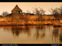 Sanctuary (Maiseydote's) Tags: sculpture nature wildlife peat bogs florafauna offaly loughbooraparklands