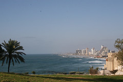 Tel Aviv from Jaffa (Textile Art/Needle Felting) Tags: beach israel tel aviv