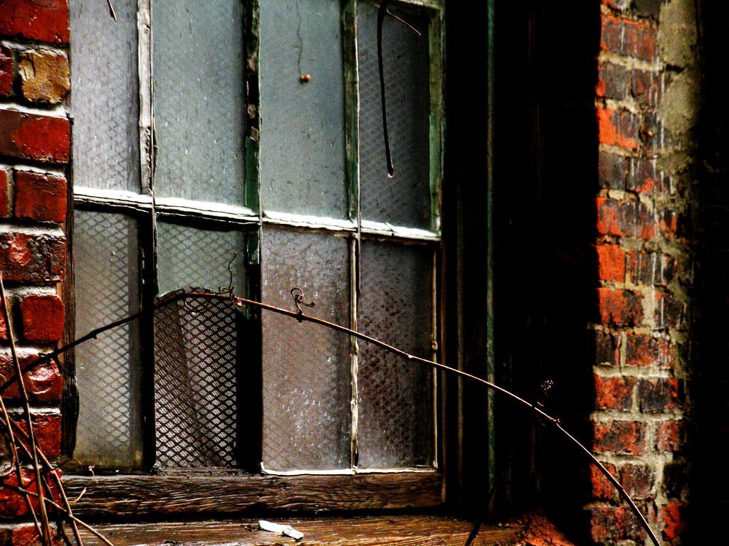 Abandoned Window