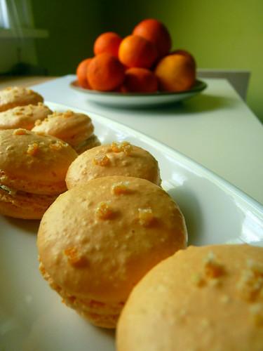 Nesselrode Macarons 01