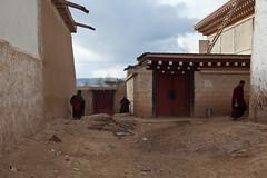 Temple Gerdeng,Aba,Sichuan (woOoly) Tags: china chinese tibet monastery amdo aba tibetan  sichuan  zhongguo kirti tibetculture tibetanbuddhist gelugpa tibetannewyear   tibetanculture    gelupa sichuantibet tibetnewyear  gerdeng  tibetarea abacounty northofsichuan  monasterykirti monasterygerdeng gerdengsi templekirti amdotibetregion yellowsect