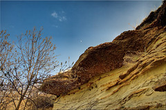 sea shells and bird nests on the prairie (Father Tony) Tags: seashells southdakota landscape photo weathered prairie adobephotoshopelements alienskinexposure canoneos50d redynamixplugin exposurefusion adobephotoshopelements7