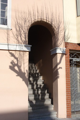 Portal Tree Shadow
