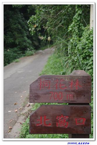 20100502 燒炭窩尋桐賞螢