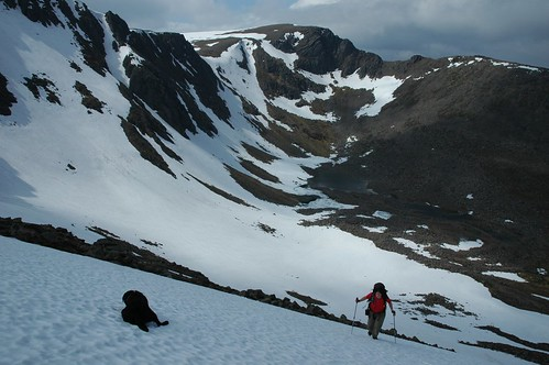 Enzo taking a rest while climbing out of Coire an t-Sneachda