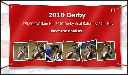 Steve Nash - William Hill Greyhound Derby Finalists 2010