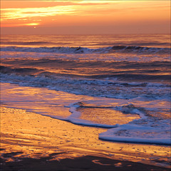 carpet of gold (leuntje) Tags: sunset beach netherlands strand gold coast zonsondergang sand glow noordzee explore northsea breakers frontpage branding noordwijk goud