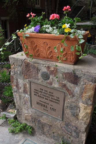 Myrna Loy & Flowers