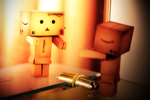 Danbo mirror by W1W1N