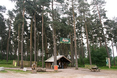 uk trees england panorama dog mountain west nature bike forest outdoors monkey centre united go kingdom follow trail cannock valley biking chase ape staffordshire birches cycles midlands stafford cannockchase swinnerton rugely birchesvalley swinnertoncycles
