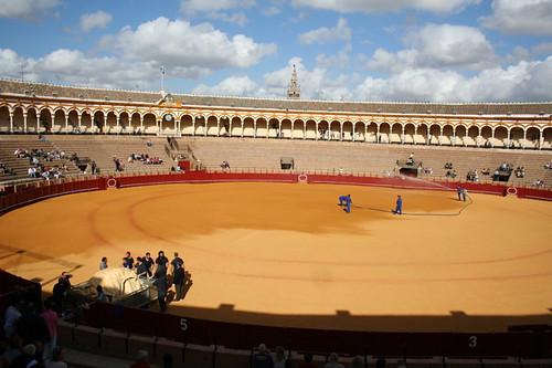 Dianas- Spain 2010 360