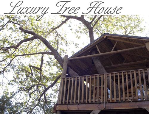 Greyton Tree House
