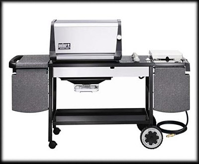 A Very Bossy Exposé: Gas Grills
