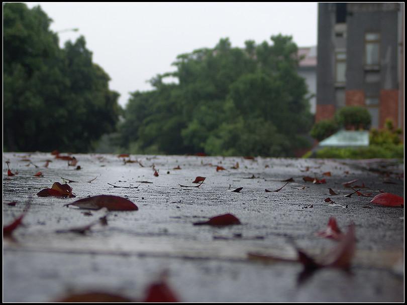 瘋狂攝影團...廖小妹北藝大雨中遊