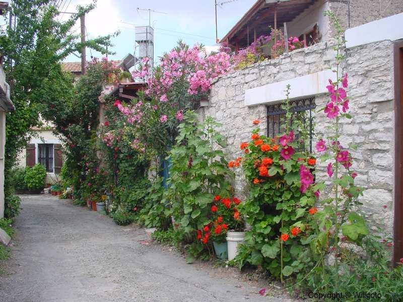 The_village