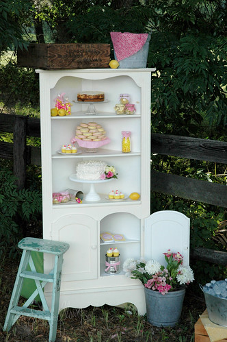 dessertcabinet5431